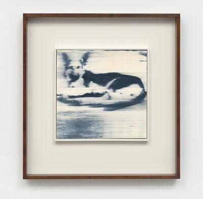 Gerhard Richter, 'Hund', 1965