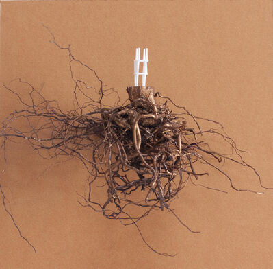 María Ángeles Atauri, 'Chair and root', 2021