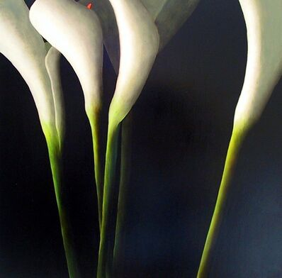 Leslie Exton, 'Calla Lilies (dimensions provided are unframed)', 2005