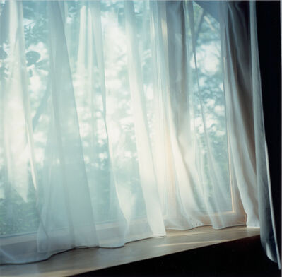 Rinko Kawauchi, 'Untitled, form the series 'Illuminance'', 2011