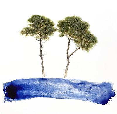 Jessica Pisano, 'Balance'