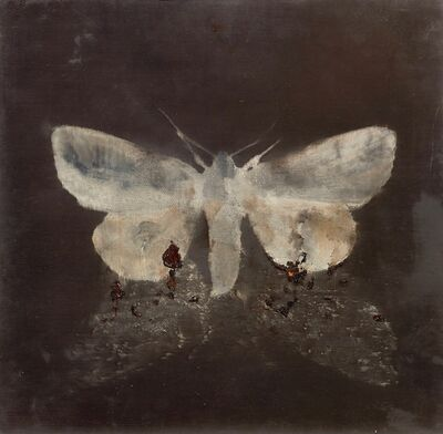 Magnus Thorén, 'Moth on moth', 2015