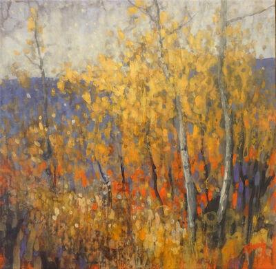 Diana Rae Zasadny, 'Beauvais Lake 19-15', 2019