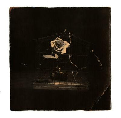 Yamamoto Masao, '0061, from Box of Ku', 1992