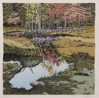Neil G. Welliver, 'New Dams Meadow', 1984