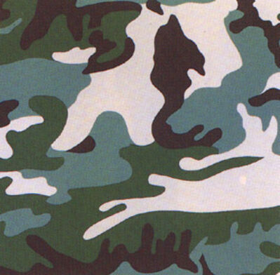 Andy Warhol, 'Camouflage FS406', 1987