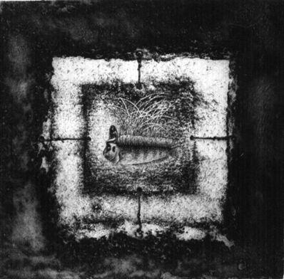 nele zirnite, 'Frame', 1994