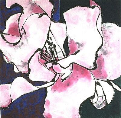 Robert Kushner, 'Camellia Pink', 1994