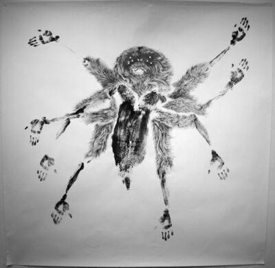 Jim Holyoak, 'Giant House Spider', 2009