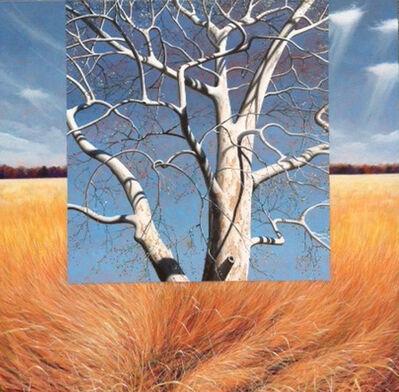 Kendall Stallings, 'Beech Tree'