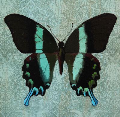 Victoria Castillo, 'Green Swallowtail', 2017