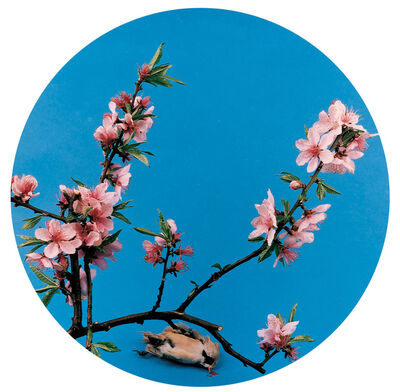 Hong Lei, 'Imitate Peach painting by anonymous in Song Dynasty', 1999