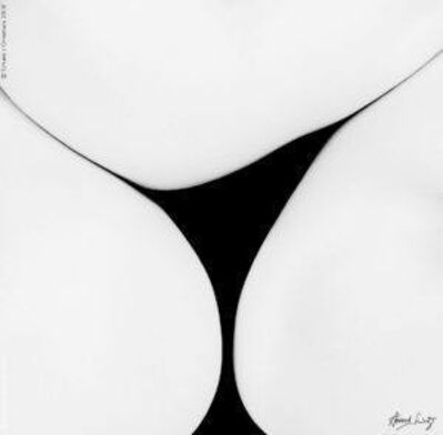 Howard Schatz, 'Fold Study 1498', 2005