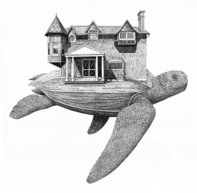 Scott Bluedorn, 'Moran's Turtle', 2017