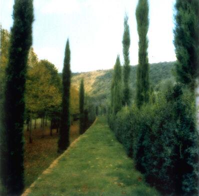 Lynn Geesaman, 'Villa Cetinale, Italy', 2000