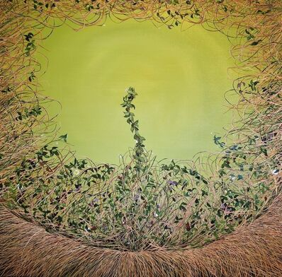 Allison Green, 'Sage Thicket', 2012