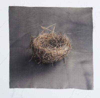 Kate Breakey, 'Nest 9', 2010-2019