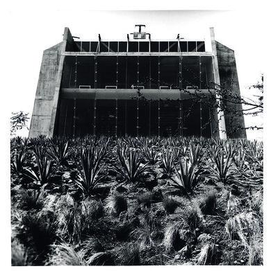 Tomás Casademunt, 'BV XIII, serie Biblioteca Vasconcelos', 2007