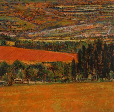 "Peter Krausz, '""Paysages 1996-2019"" N', 2019"
