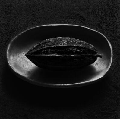 Flor Garduño, 'Cacao', 2000