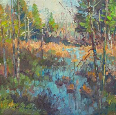Mike Graves, 'Broadmoor Audubon Sanctuary, Natick MA', 2021