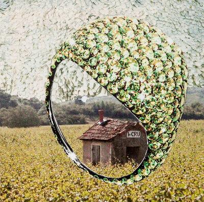 Hollis Hildebrand-Mills, 'Environmental', 2013