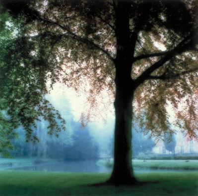 Lynn Geesaman, 'Chateau d'Esclimont, France (5-95-24c-8)', 1995