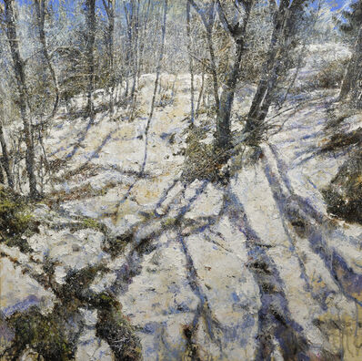 Raffaele Minotto, 'Ombre sulla neve', 2017