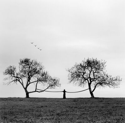 Heather Boose Weiss, 'One With the Birds', 2004