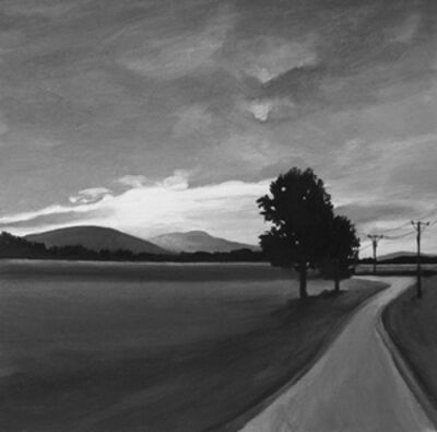 Elizabeth Livingston, 'Wire Road', 2012