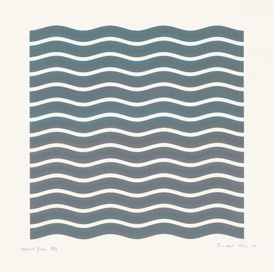 Bridget Riley, 'Coloured Greys [2]', 1972