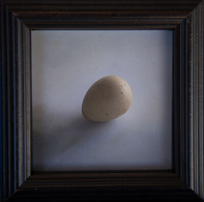 Kate Breakey, 'Quail Egg 49', 2019