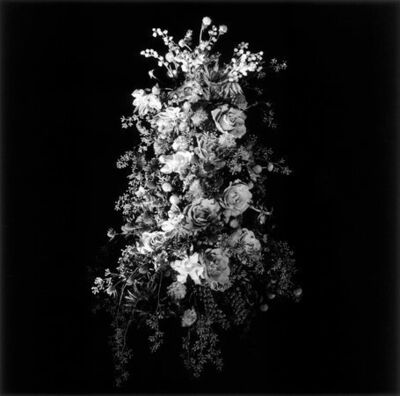 Robert Mapplethorpe, 'Flower Arrangement', 1984