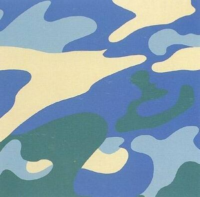 Andy Warhol, 'Camouflage II.411', 1987