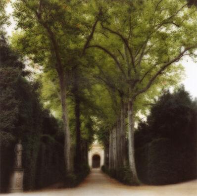 Lynn Geesaman, 'Boboli Gardens, Itlay (10-00-2c-7)', 2000