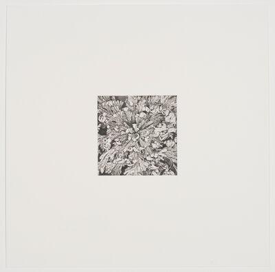 Rosana Castrillo Diaz, 'Untitled', 2009