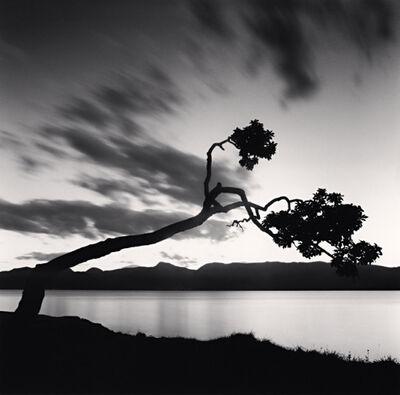 Michael Kenna, 'Kussharo Lake Tree, Study No 8, Hokkaido, Japan', 2008