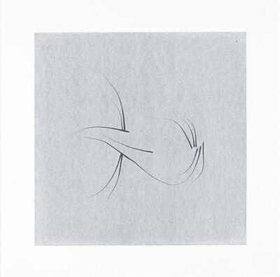Nina Katchadourian, 'Whisker Print (4B)', 2013