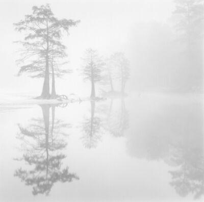 David H. Gibson, 'Cypress Island, Village Creek, Texas', 1987