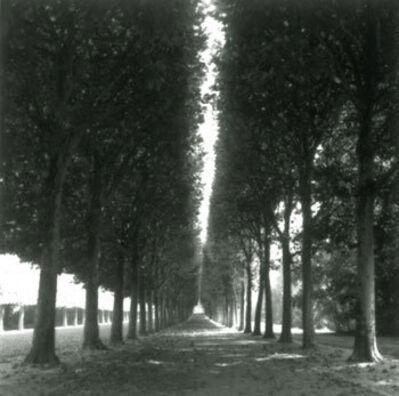 Lynn Geesaman, 'Versailles, France (4-99-3-2 #1)', 1999