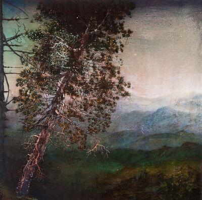 Joan Nelson, '#743', 2011