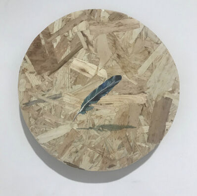Alastair Gordon, 'Feather, Levitating', 2019