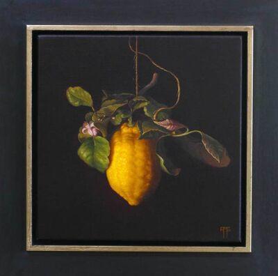Raquel Alvarez Sardina, 'Lemon and Blossom', 2017
