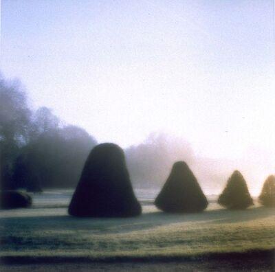 Lynn Geesaman, 'Parc d'Esclimont, France', 1999