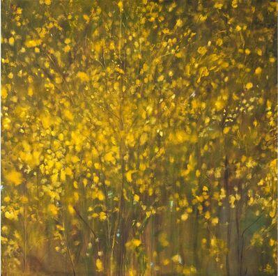 Carole Pierce, 'Light Field I', 2013-2014