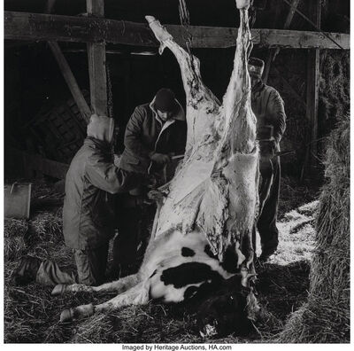 Peter Hujar, 'Untitled (Slaughtered Cow)', 1981