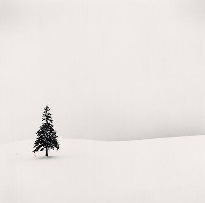 Michael Kenna, 'Lone Tree, Bibaushi Hokkaido, Japan', 2004