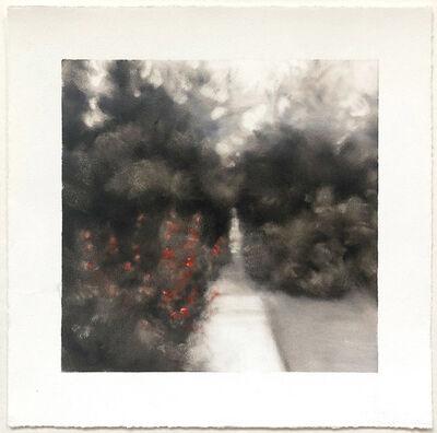 Lynne McDaniel, 'Irrational Exuberance', 2020
