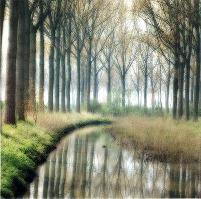 Lynn Geesaman, 'Damme, Belgium (4-04-5c-4)', 2004