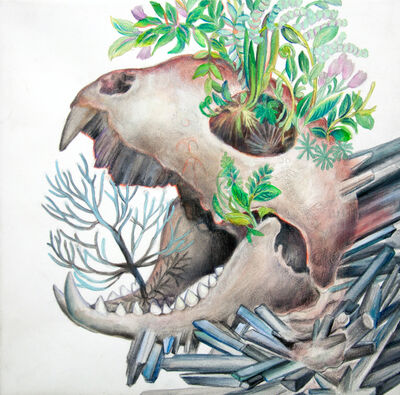 Maki Ohkojima, 'Going inside the womb of the ground', 2017